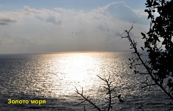 18-zoloto-morya